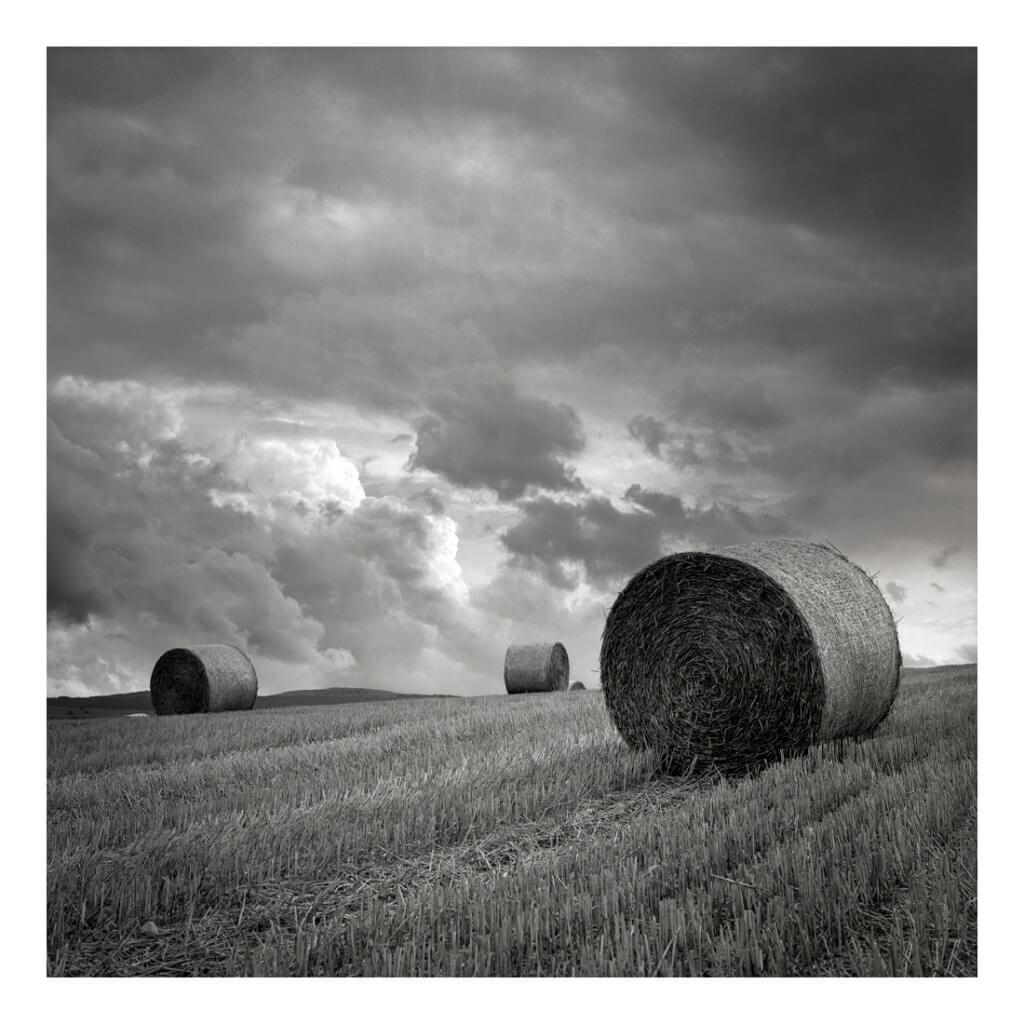 Champs de blé par temps orageux