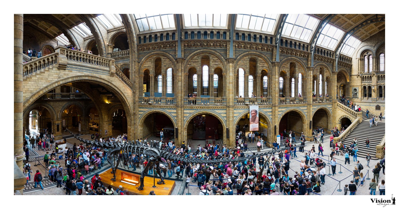 Halle du musée d'histoire naturelle